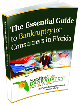 Free Bankruptcy Guide